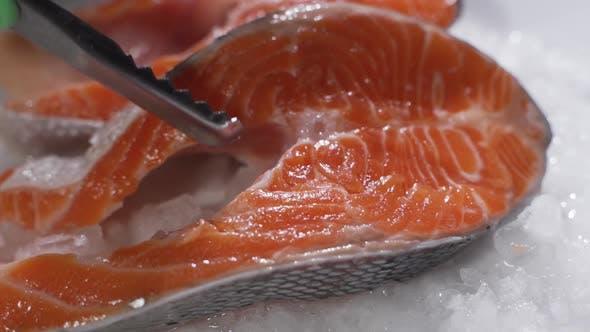 Thumbnail for Fresh Raw Salmon on Ice. Big Pieces Raw Salmon. Fish on Ice. Salmon on Counter. Fresh Fish