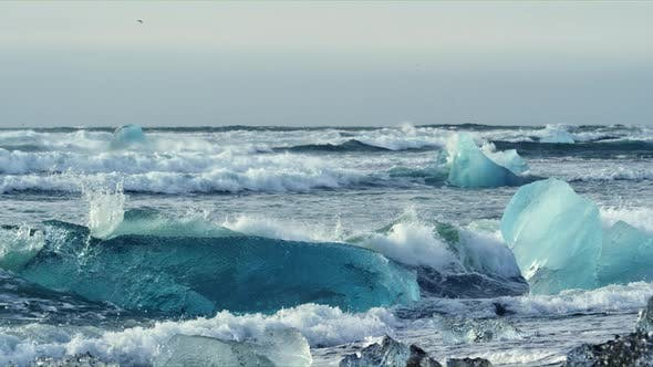 Thumbnail for Pieces of Icebergs Floating at Diamond Beach