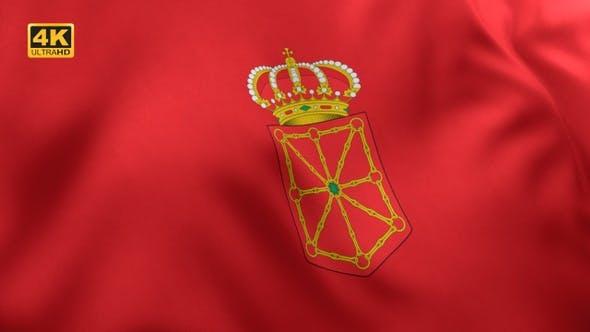 Thumbnail for Navarre Flag - 4K