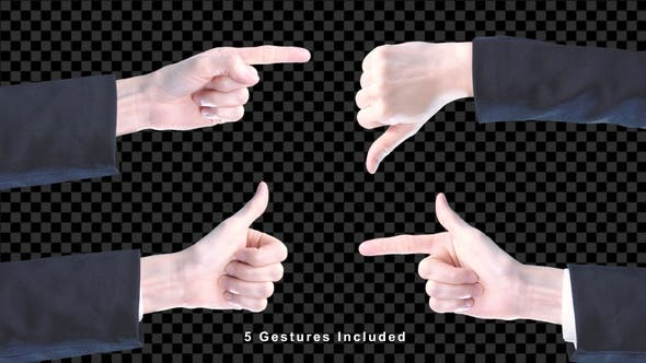 Thumbnail for Gesture Hand With Alpha