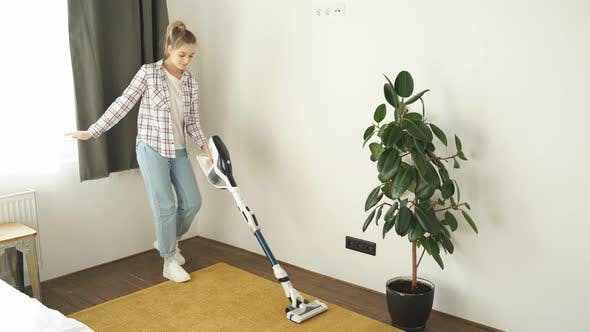 Household Housework and Cleaning Concept