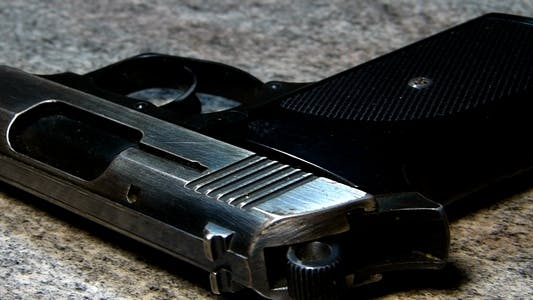Thumbnail for Gun 1