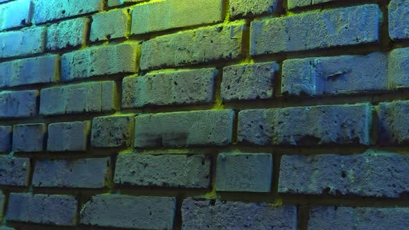 Empty Brick Wall with Neon Light Copy Space