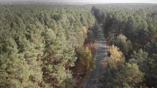 Cyclists riding bicycles in forest