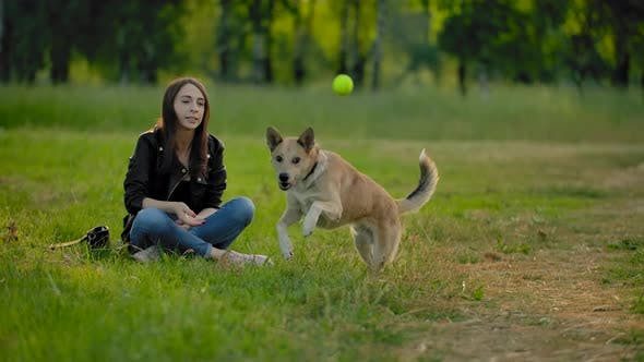 Thumbnail for A Girl Throws a Tennis Ball To Her Dog To Bring It Back.