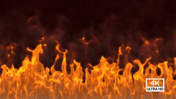 Vorderseite der großen Flamme
