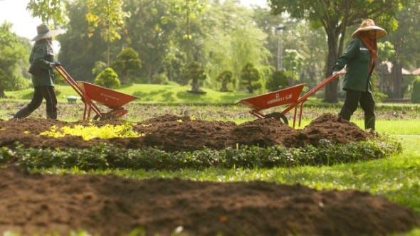 Thumbnail for Making Garden