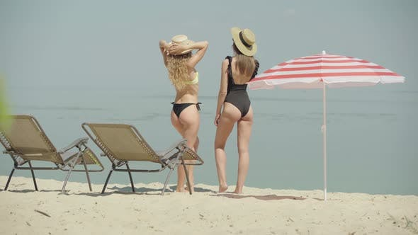 Thumbnail for Wide Shot of Two Tanned Caucasian Women Standing on Sandy Beach and Talking. Back View of Positive