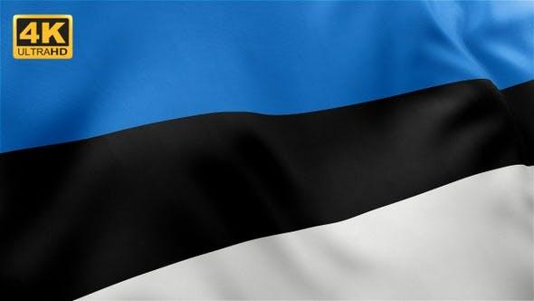 Thumbnail for Flag of Estonia - 4K