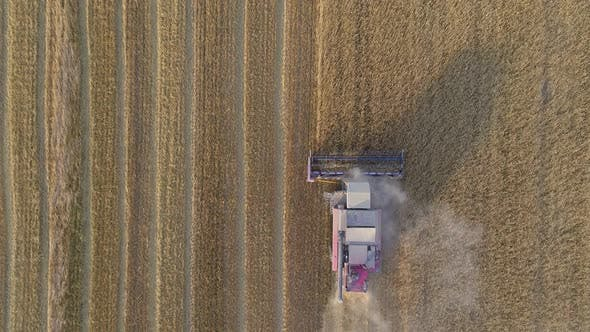 Thumbnail for Top View Down on the Agricultural Combine