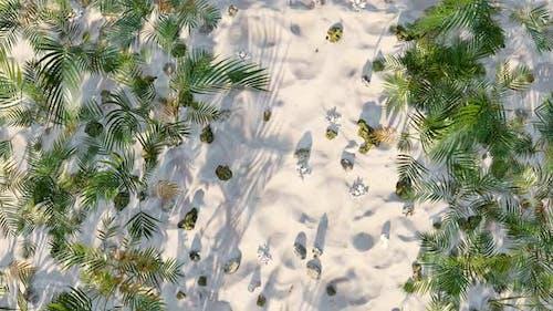 Summer On The Beach 03 HD