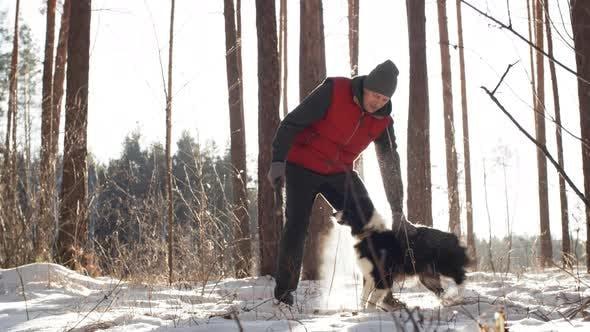 Thumbnail for Dog Having Fun on Winter Walk