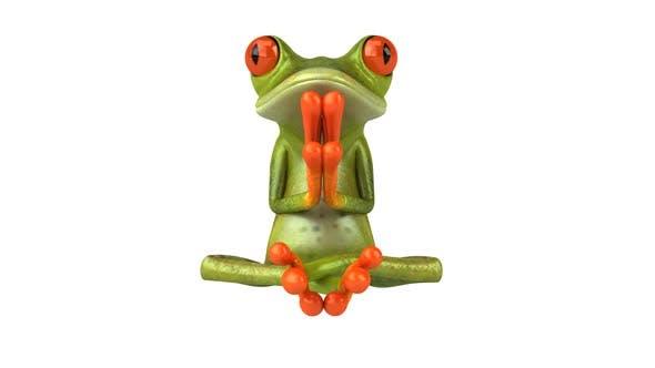 Thumbnail for Zen frog