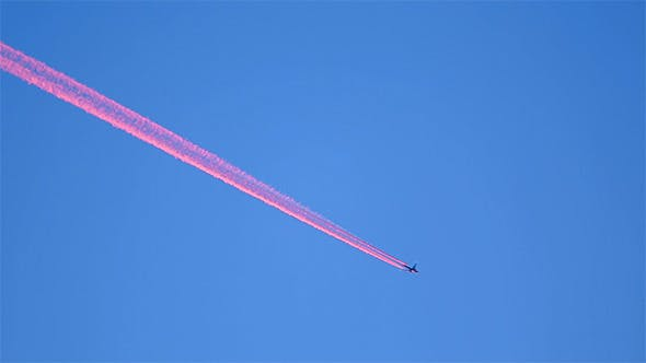Cover Image for Pink Contrails