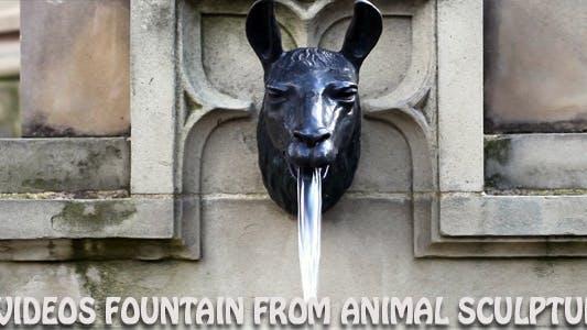 Thumbnail for 4 Videos - Brunnen aus Tierskulptur