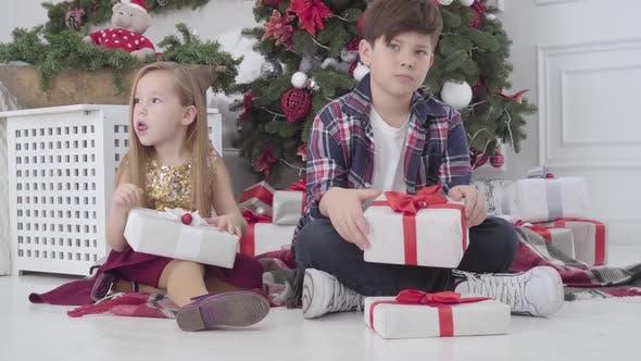 Thumbnail for Porträt von niedlichen kaukasischen Kindern sitzen unter dem Weihnachtsbaum mit Geschenk-Boxen und suchen