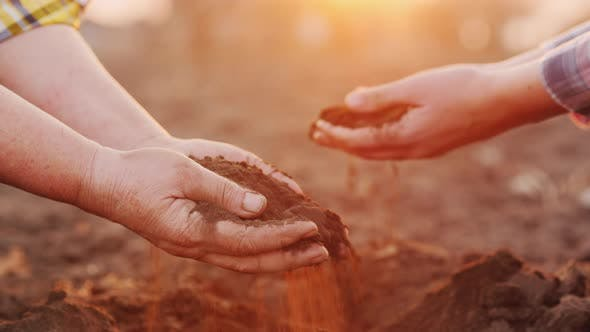 Thumbnail for Two Farmers Hold Handfuls of Soil From the Field