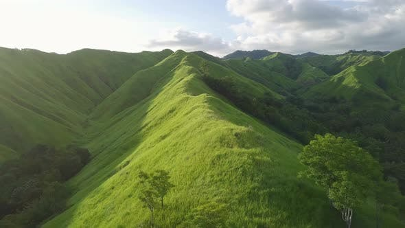 Thumbnail for Aerial View. Flight Over a Green Grassy Hills