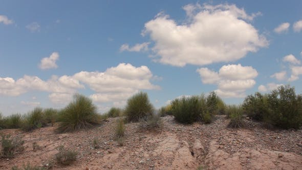 Thumbnail for Grass In The Desert And Clouds