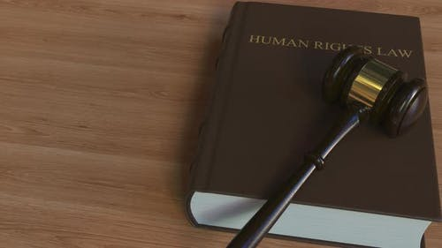 Court Gavel on HUMAN RIGHTS LAW Book