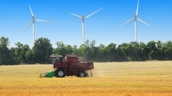 Thumbnail for Field, Wind Power And Harvester