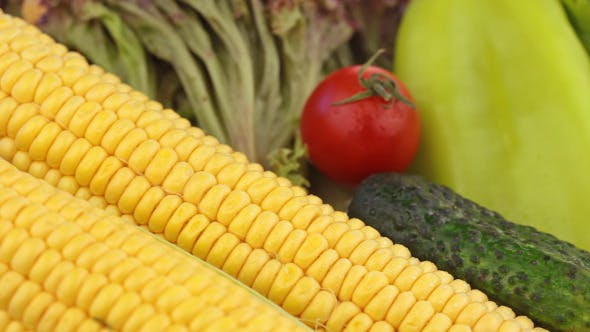 Thumbnail for Corn And Other Vegetables