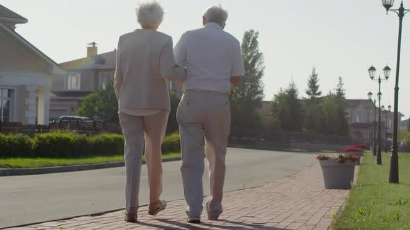 Thumbnail for Back View of Senior Couple Walking Outdoors on Summer Day
