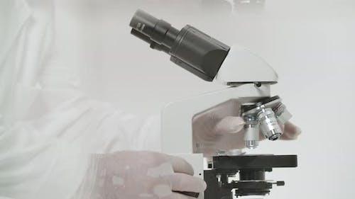Kopf des Mikroskops einstellen