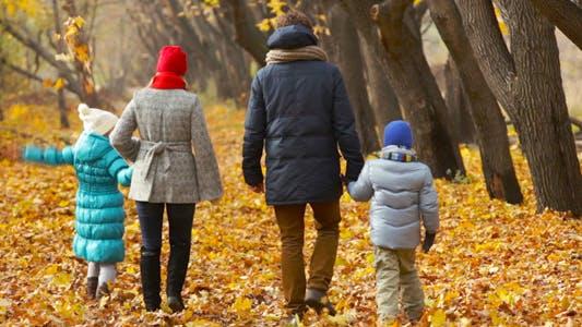 Thumbnail for Autumn Parenthood