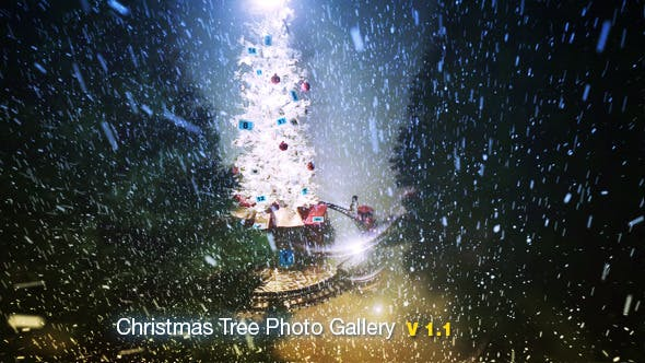 Thumbnail for Christmas Tree Photo Gallery