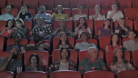 Multi-ethnic Spectators Watching Movie in Cinema