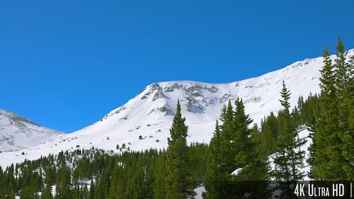4K Aerial parallax of a snowy rocky mountain peak with trees in the foreground