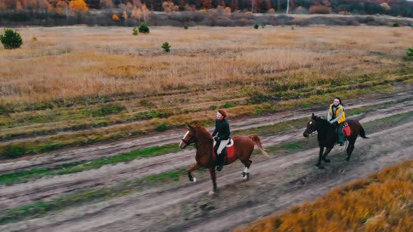 Thumbnail for Two Bay Horses with Equestrians on Their Back Are Galloping on the Autumn Field