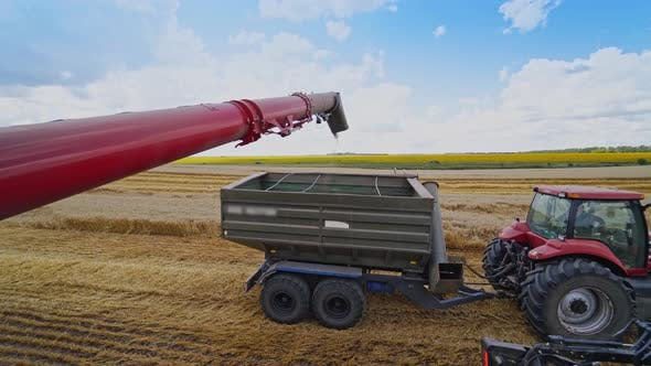 Cover Image for Grain Being Loaded Into a Truck Trailer