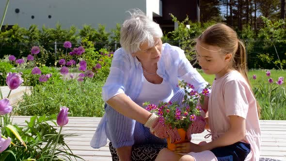 Thumbnail for Grandmother and Girl Planting Flowers at Garden 28
