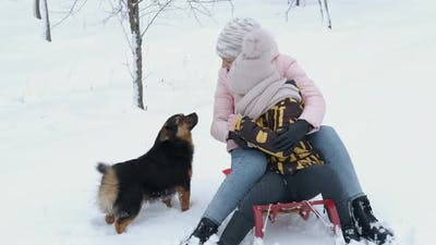 Walk with dog in winter.