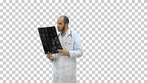 Doctor examining Xray results, Alpha Channel