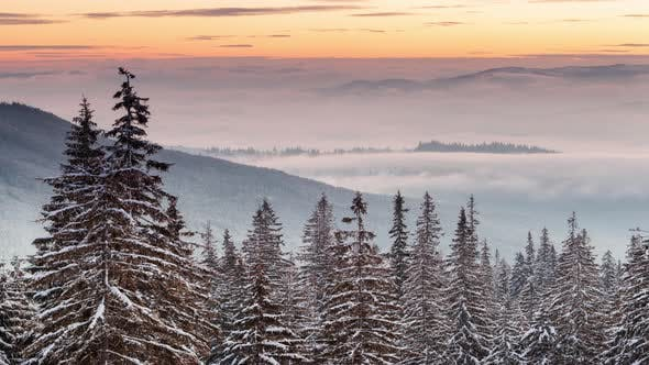Beautiful Winter Landscape with Snow Covered Trees. Winter Mountains.