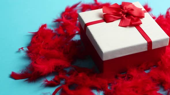 Thumbnail for Box with a Gift, Tied with a Ribbon Placed on Red Feathers
