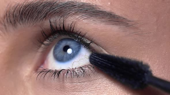 Thumbnail for Close Up of the Eye Lashes Makeup, Woman with Evening Makeup Paints Lashes, Eye Makeup, Beauty