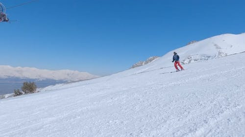 Skier Riding Freeride on Ski From Snowy Slope in Winter Mountain Pine Forest