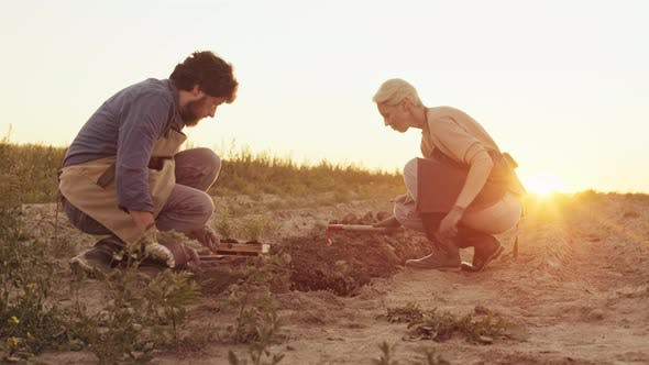 Two Farmers Planting Plants