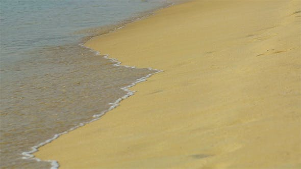 Cover Image for Sandy Beach