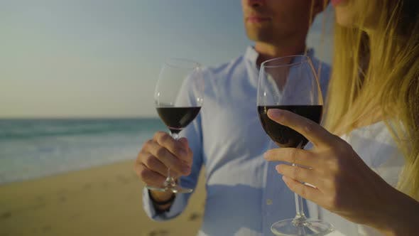 Thumbnail for Cropped Shot of Couple Drinking Red Wine on Beach