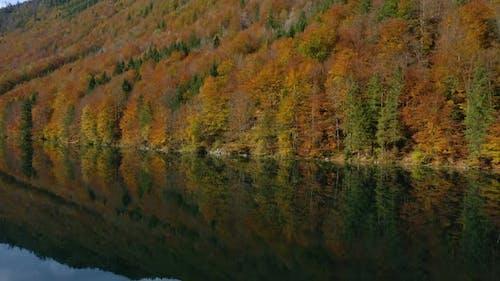 Beautiful Austrian Autumn Lake 7