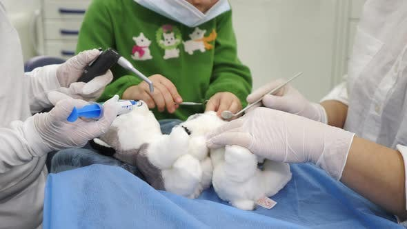 Thumbnail for Stuffed toys being treated by children