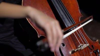 Cello Girl Woman Playing Cello Close-up . Kyiv. Ukraine