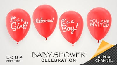 Baby Shower Celebration