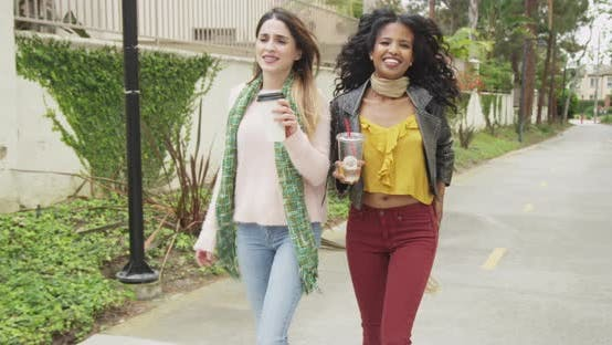 Thumbnail for Stylish women walking together outdoors