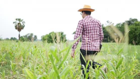 Farmer laptop walk farm